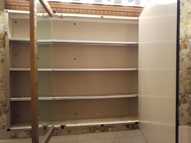 purged medicine cabinet 031817