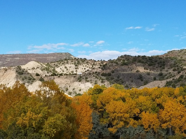 01 Jenny landscape NM Oct 2019